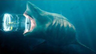 Megalodon vs Shark Cage Scene – The Meg (2018) Movie Clip HD