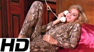 What's New, Pussycat • Theme Song • Tom Jones & Burt Bacharach
